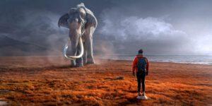 Elefant Blog Thetahealing Ausbildung