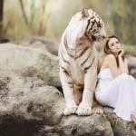 Thetahealing Ausbildung Tiger blog